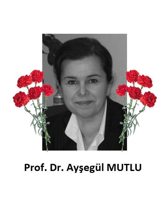 Prof. Dr. Ayşegül MUTLU