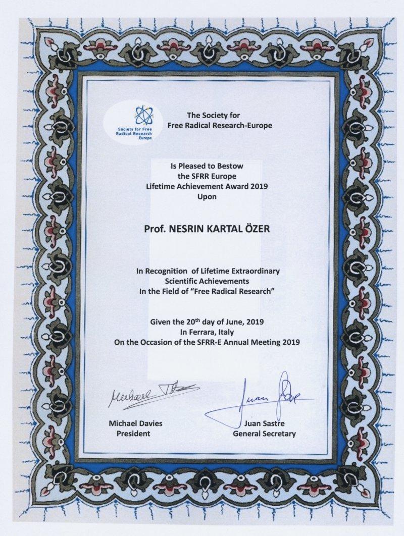 NKÖ Award - Yeni