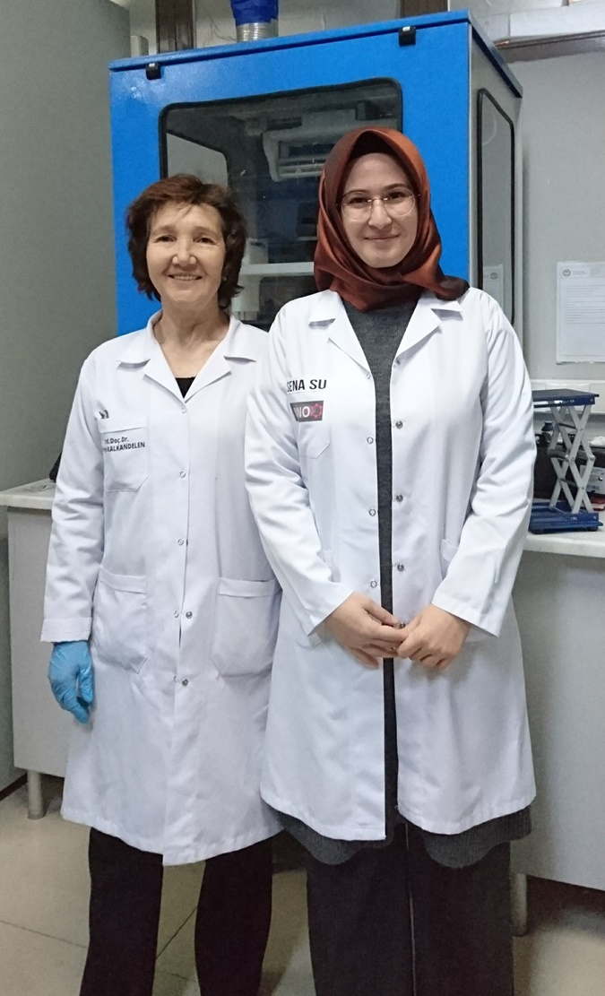 The Project of Nanotechnology Centre Has Been Supported by TUBITAK